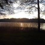 Der Bauernsee