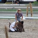 Herz-Rythmus Massage für´s Pferdchen ;)