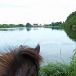 Blick auf Dobbrikow über den Bauernsee
